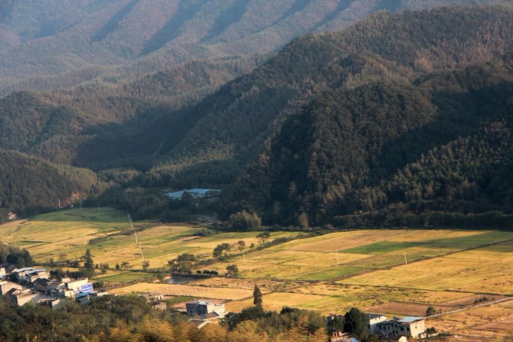 张金凤:从《双合莲》到爱情天梯,喜看三山新风貌