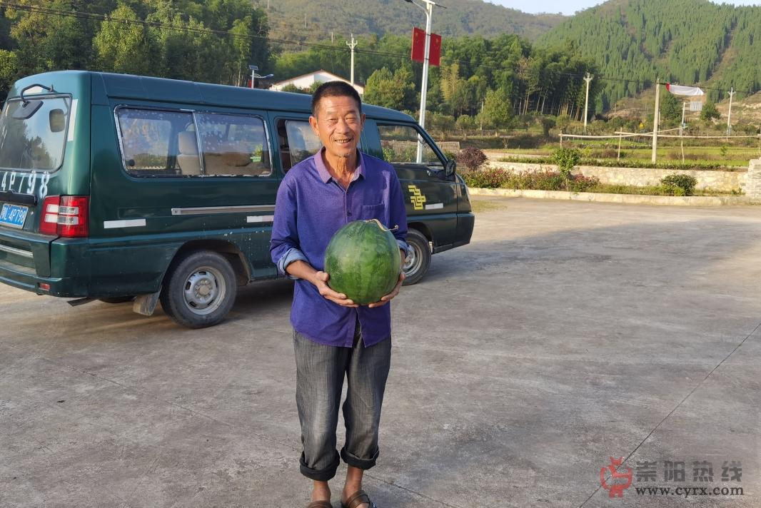 崇阳:走向我们的小康生活,大路货也能卖向大市场