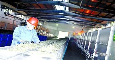 崇阳:绿色产业释放发展红利