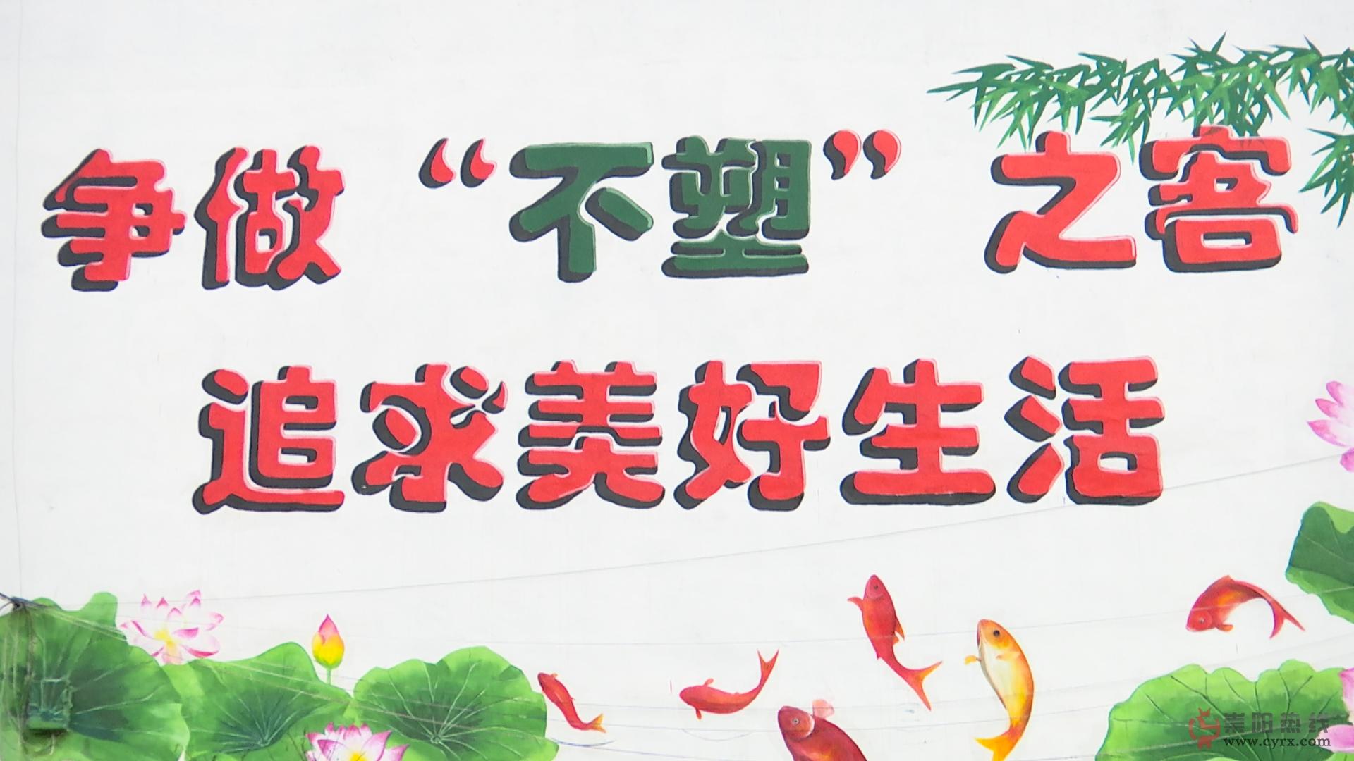 """有力度更有温度——崇阳县港口乡""""禁塑""""成效显著"""